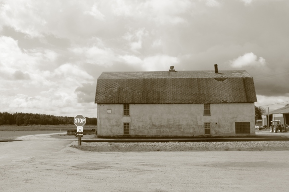 sepia house